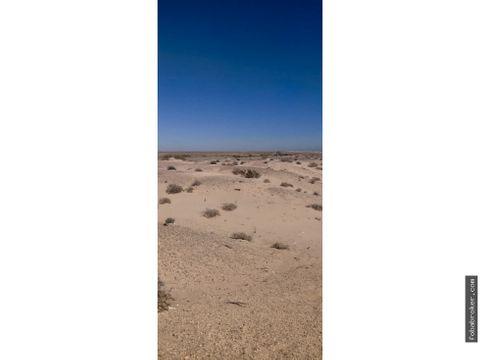 terreno a orilla de carretera el golfo puerto penasco 70 hectareas