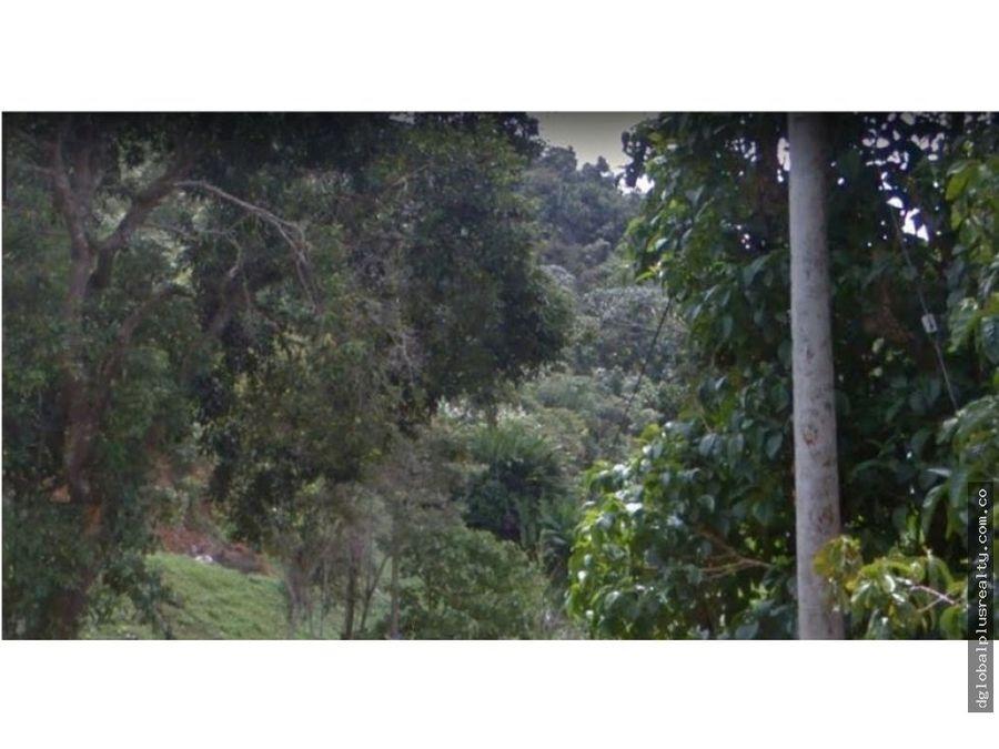 finca cuspide de la montana en dapa bosque agua y naturaleza negocia