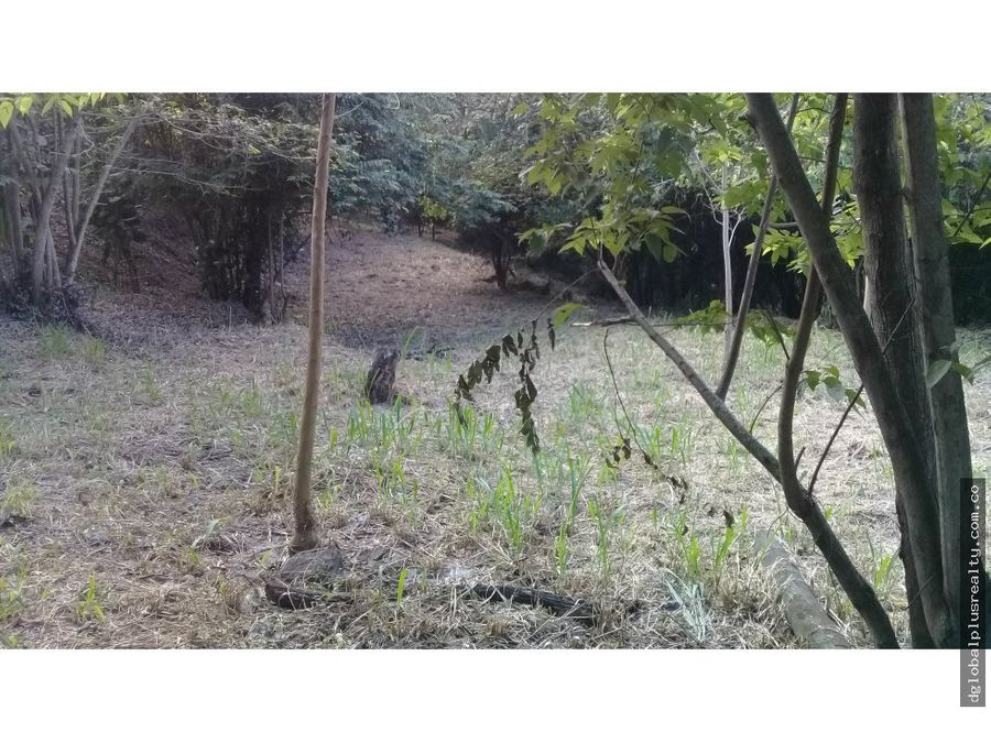 1a arroyohondo bambure lote 6 dapa