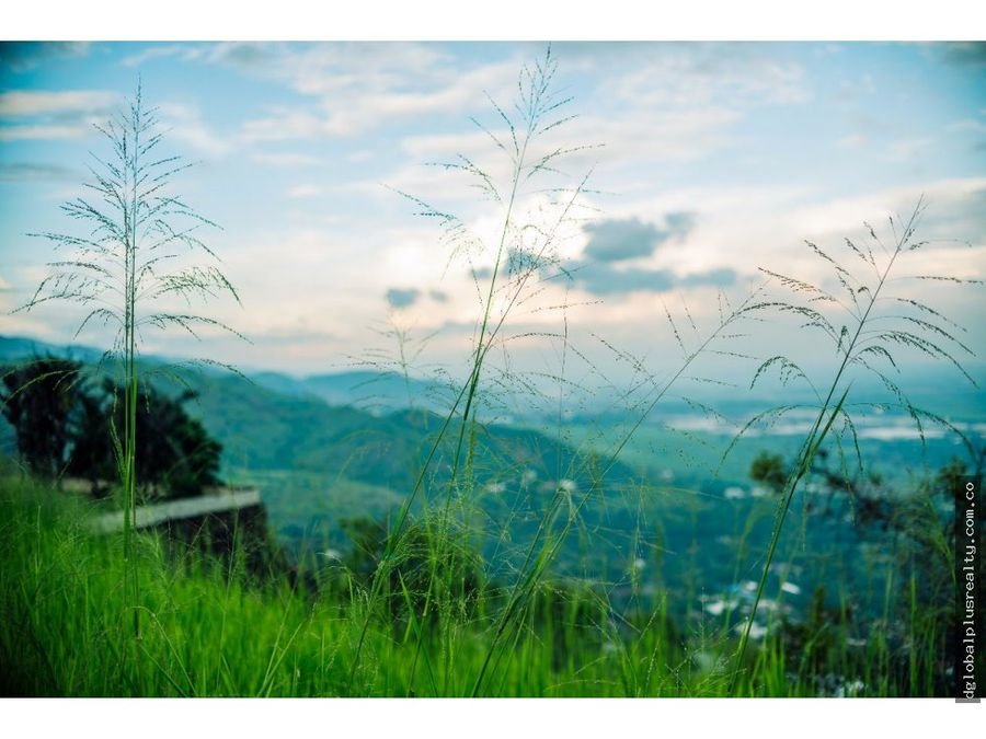 lote colinas de arroyoalto vista al valle