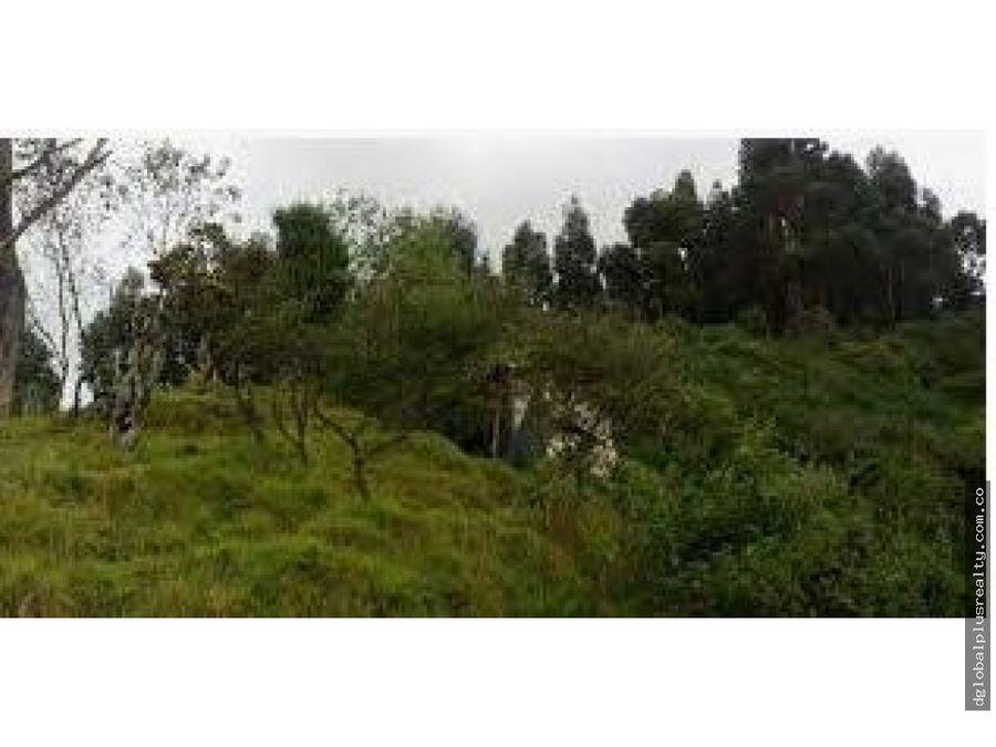 calera bogota lote chacaito floresta de la sabana