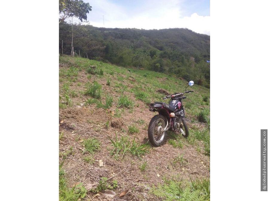 dagua km 34 lotes al alcance de todos ni modo de quejarse rio rio