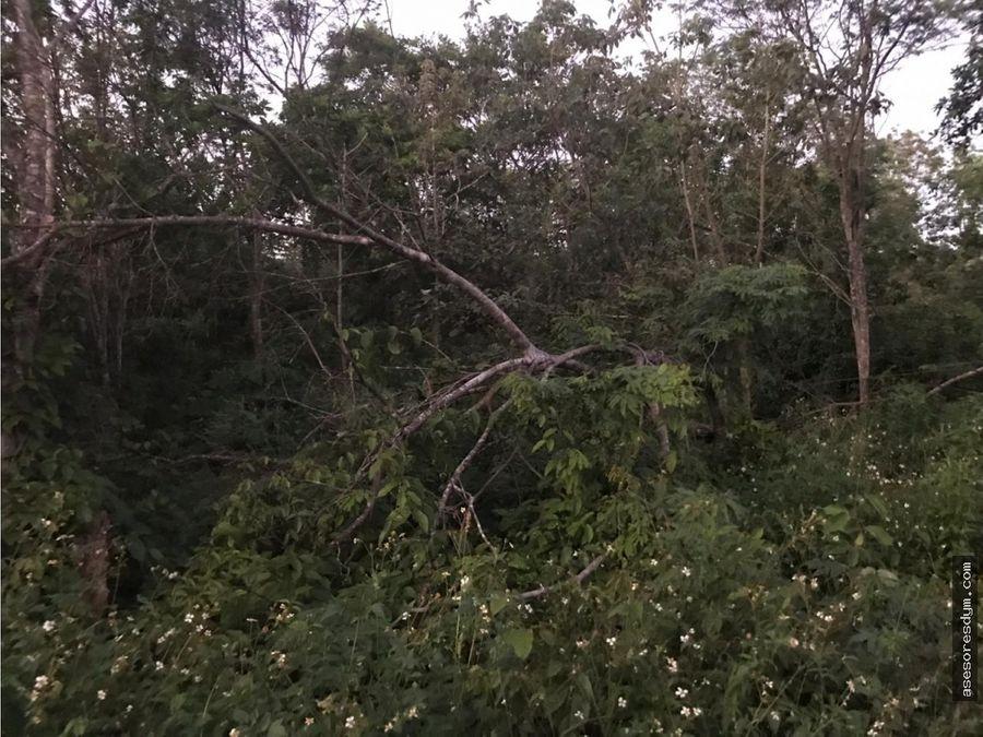 venta terreno en colonia tres reyes cancun