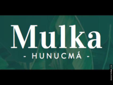 mulka lotes de inversion en yucatan
