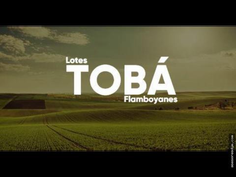 lotes toba