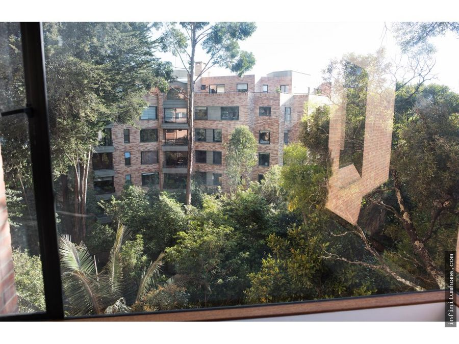 bosque medina clasico vista verde