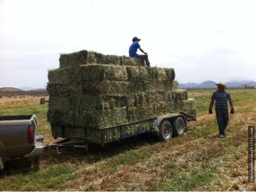 urge venta de rancho agricola al norte de ramos arizpe 82 has