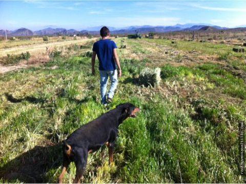 venta de rancho agricola al norte de ramos arizpe 82 has