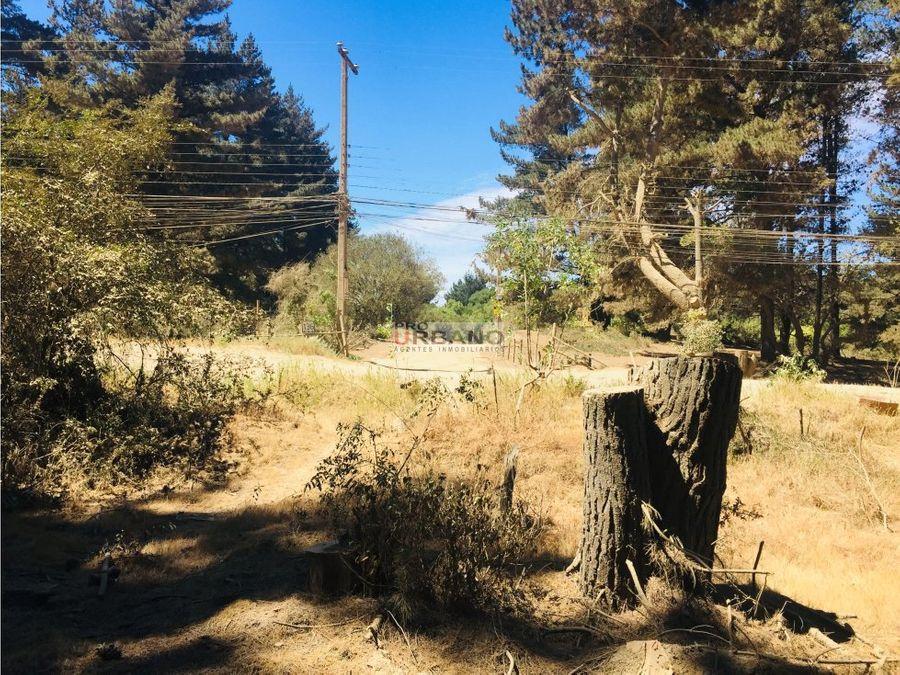 oportunidad inversionistas terrenos en los pinos