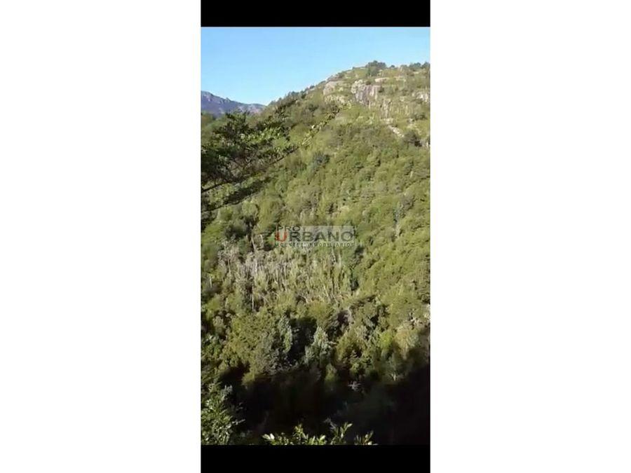 gran campo 98 hectareas en llanada grande cochamo