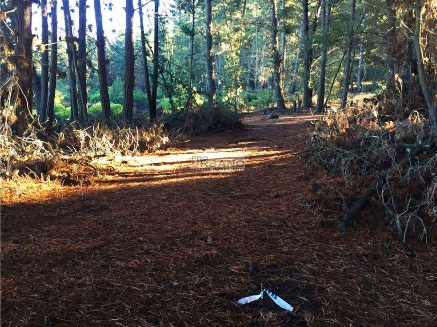 excelente oportunidad inversion pano en los pinos