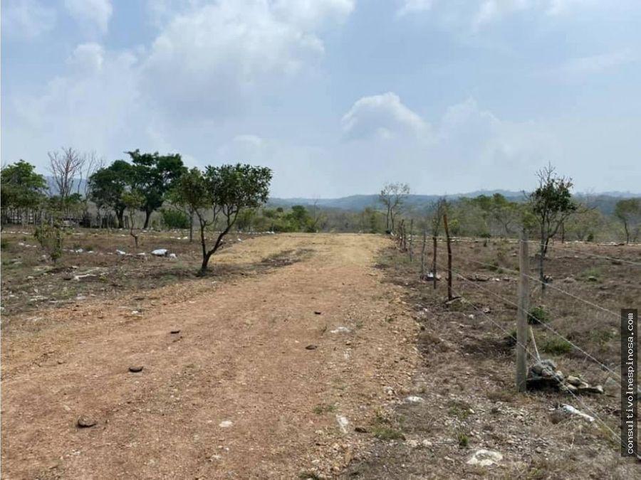 terrenos palo verde la canada