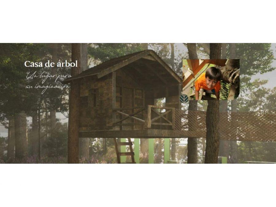 bosque real vida en armonia landform niveles 17 24 a