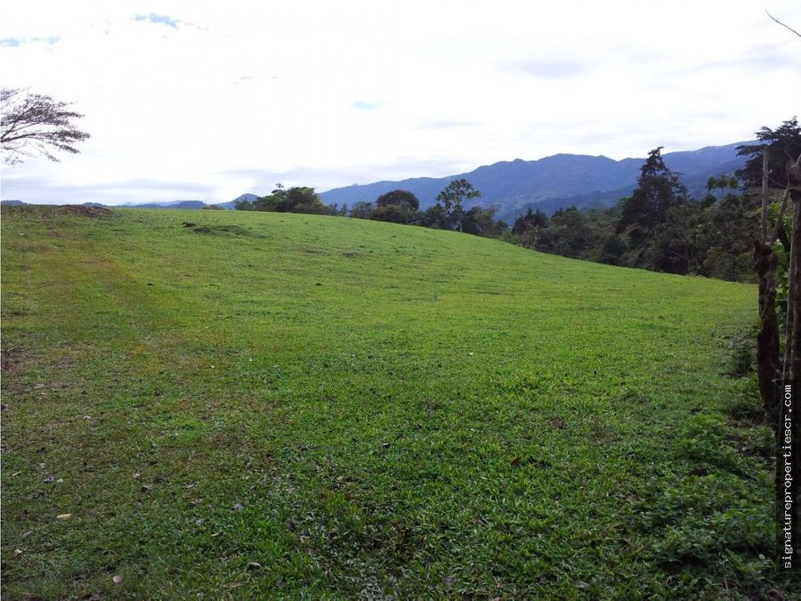 terreno en excelente ubicacion cartago paraiso