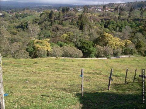finca de 16 hectareas san isidro coronado