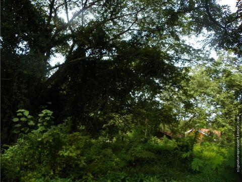 lote en tamarindo guanacaste