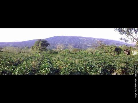 terreno para desarrollo sabanilla de alajuela