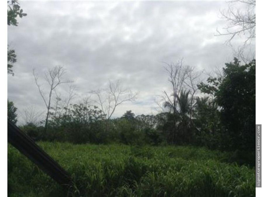 terreno apto para agricultura siquirres