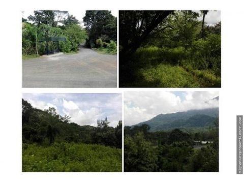 terreno de 9 hectareas con frente de calle publica