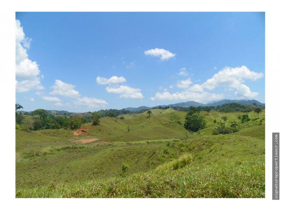 finca ganadera de 438 hectareas quepos