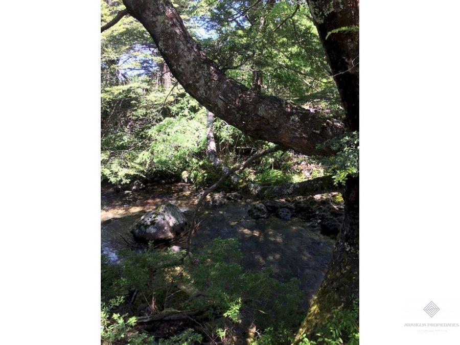 hermosa parcela en venta de 1 hectarea con orilla de rio en pucon