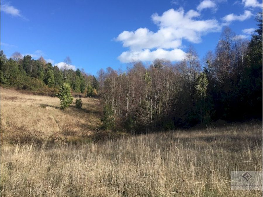 gran oportunidad espectacular terreno de 35 hectareas en pucon
