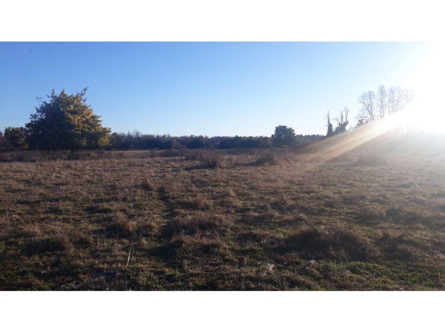 campo de 26ha en venta en la comuna de freire araucania