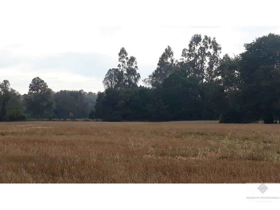 campo de 32ha en venta a 9kms de freire con orilla laguna