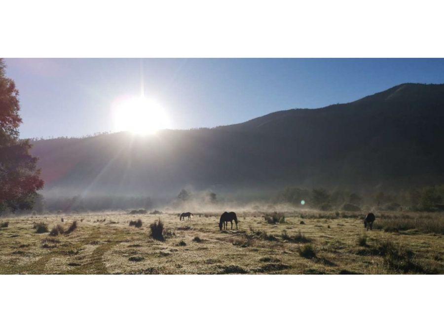 parcelas en venta en loteo ecologico en curarrehue valle de panqui