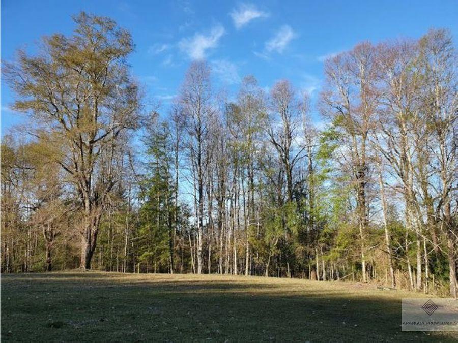 oportunidad campo de 368 hectareas en venta en villarrica lefun