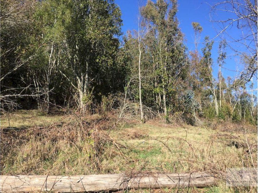 hermoso campo de 16ha en venta a 26 kms de villarrica