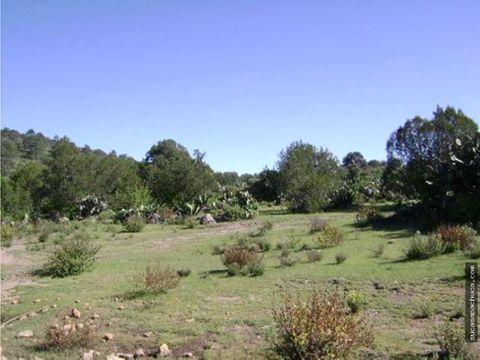 vende terreno de 65 hectareas en epazoyucan hidalgo