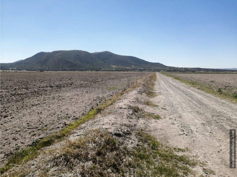 venta de terreno 495 has mpio villas de tezontepec