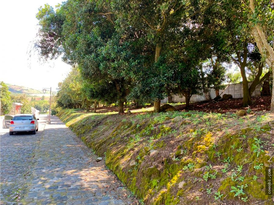 en venta lote en hacienda el comendador carretera a san miguel duenas