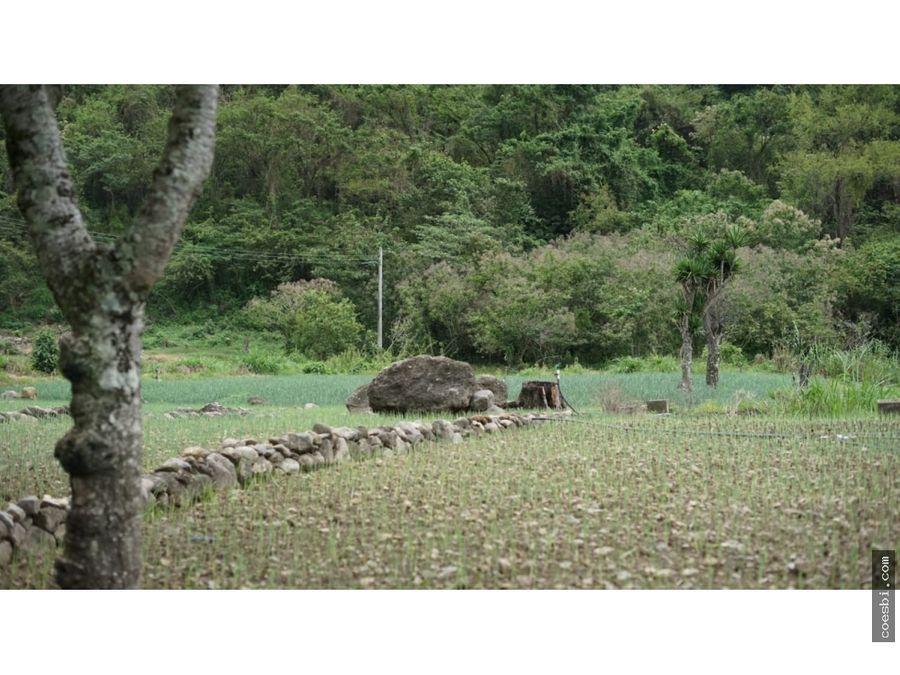 en venta terreno de 415mts2 en panajachel solola atractiva area