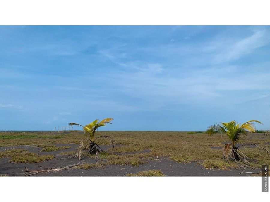 en venta terreno de 8587vrs2 en la barrita puerto de san jose esc