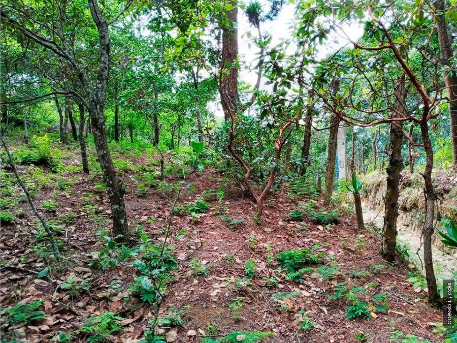 terreno de 1400mts2 a orilla de carretera en la aldea el hato ag