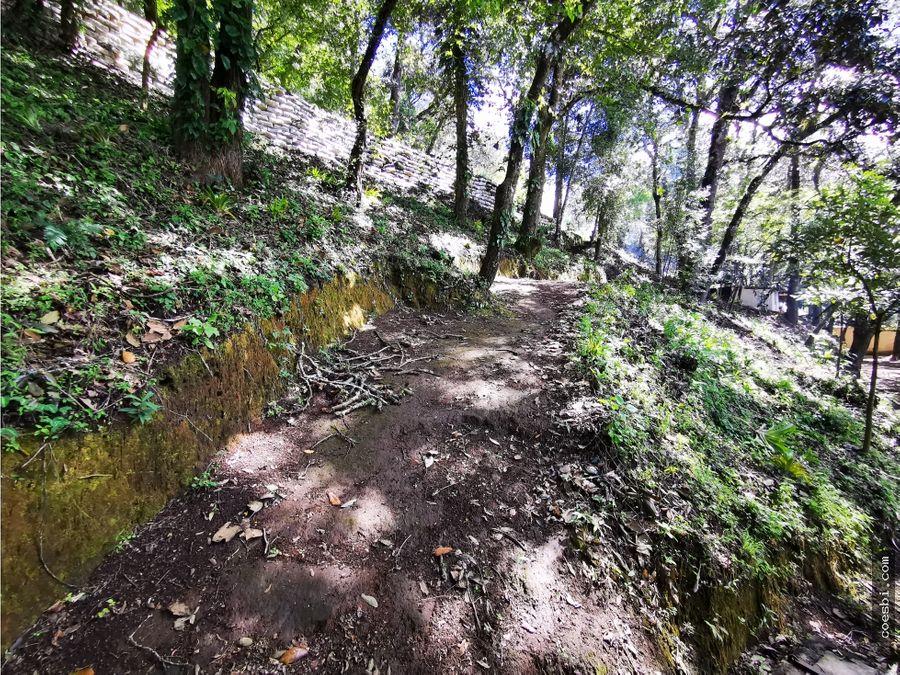 terreno grande y quebrado de 5500 vrs en aldea el hato ventarenta