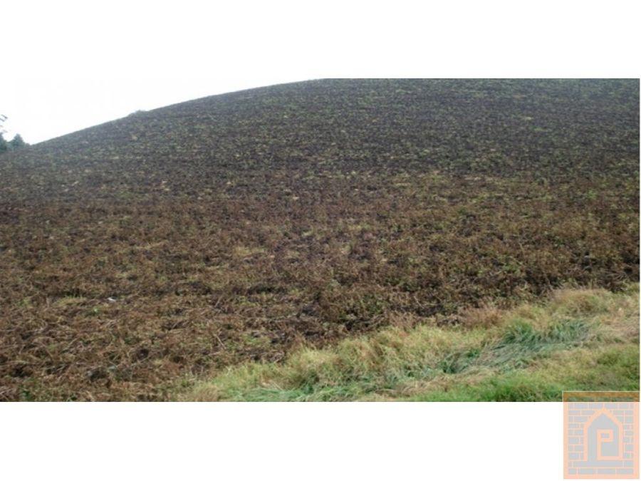 se vende terreno en zipacon cundinamarca
