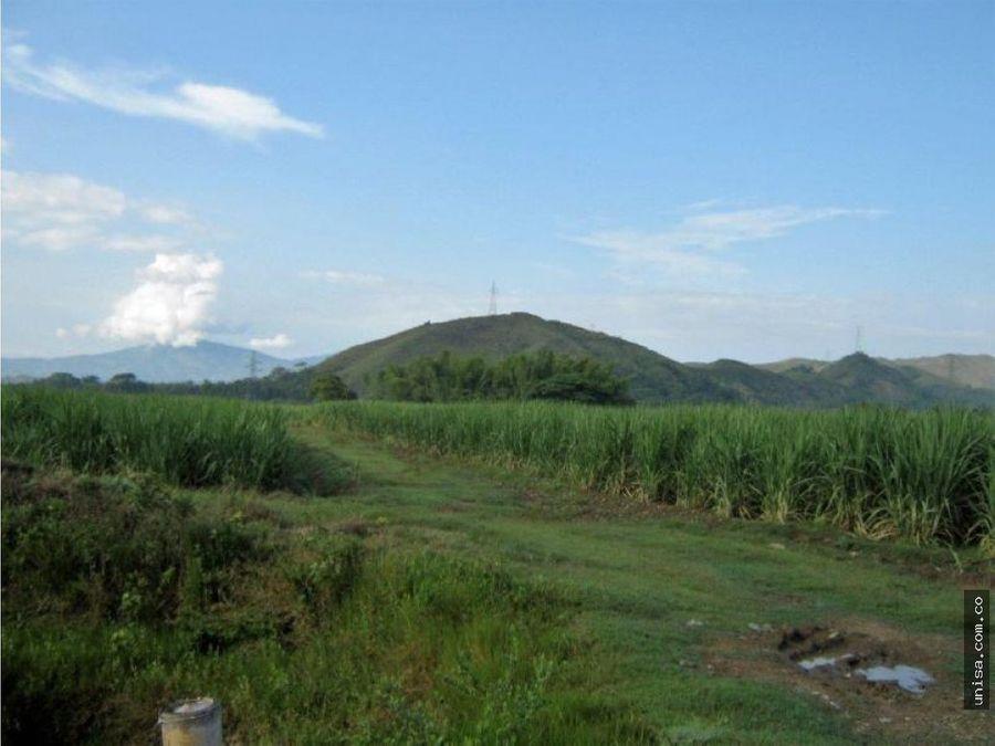 lote para cultivo en venta corregimiento de timba jamundi 6560