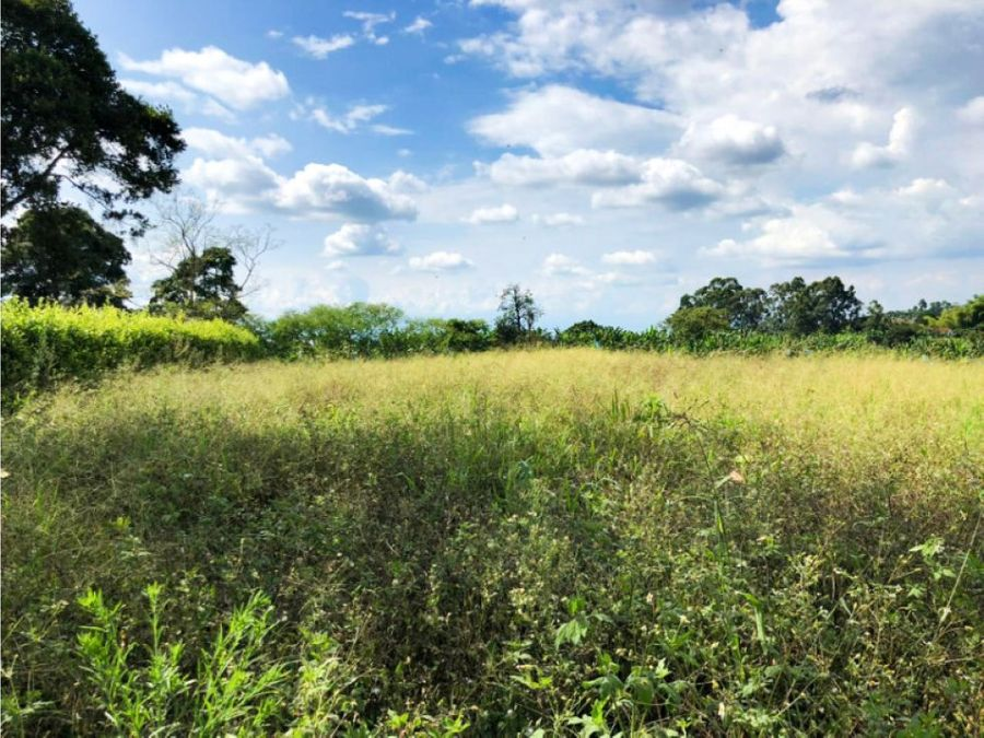 venta de terreno en vereda la union quimbaya quindio