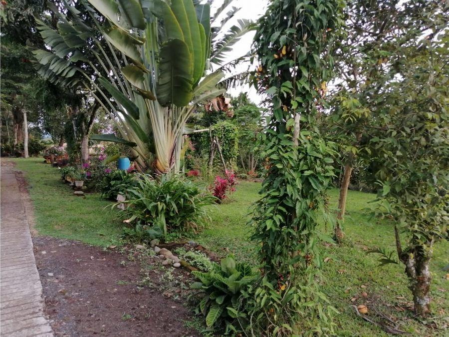 finca en venta via quimbaya alcala