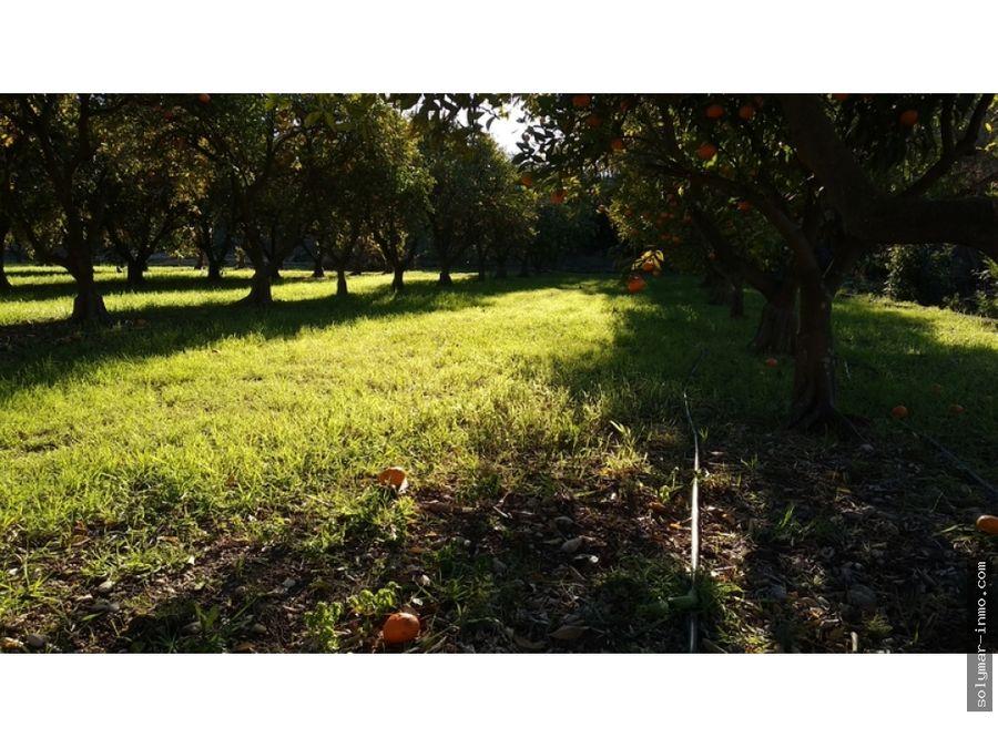 venta parcela agricola