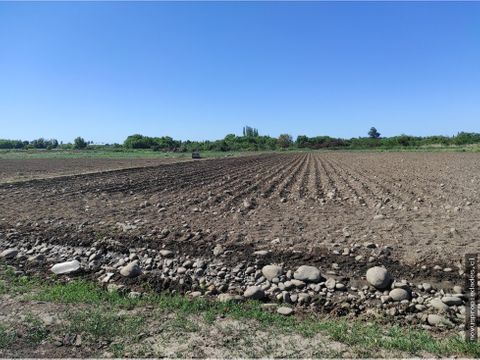 se vende fundo en duao 25000000 por hectarea
