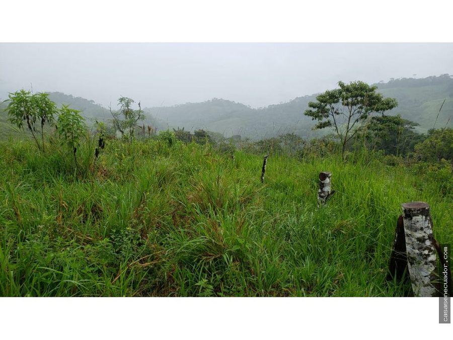 oportunidad vendo 56 hectareas en zamora namires alto 55000 neg