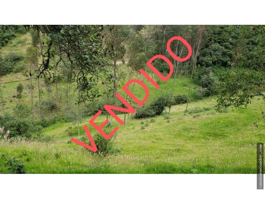 oportunidad vendo 2 hectareas en el valle cochansoto 53000 neg