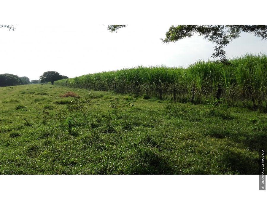 terreno en la costa de usulutan