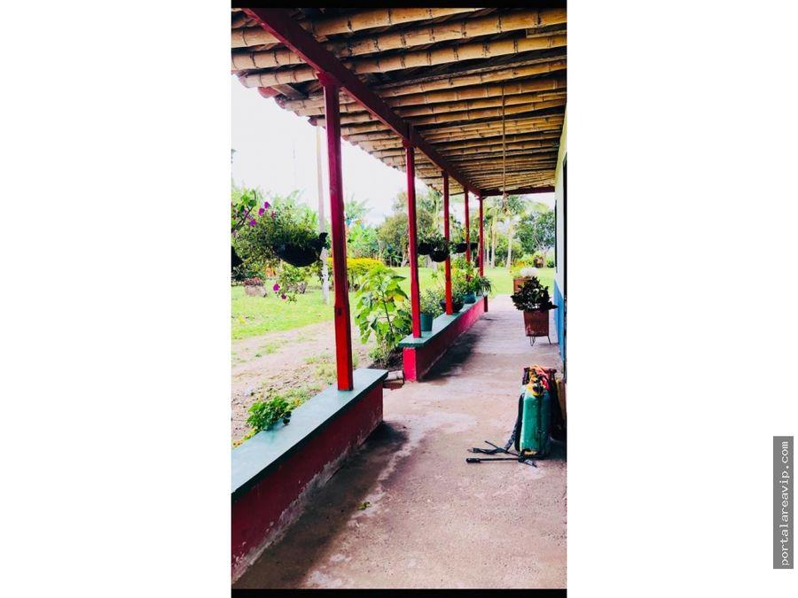 venta finca quimbaya