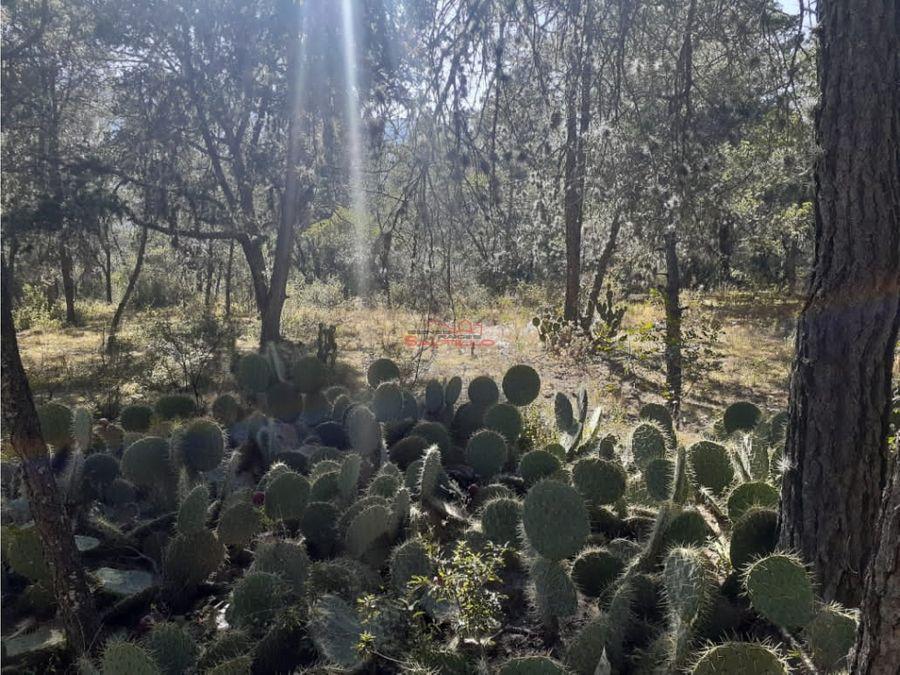 se vende cabana en bosques de huachichil