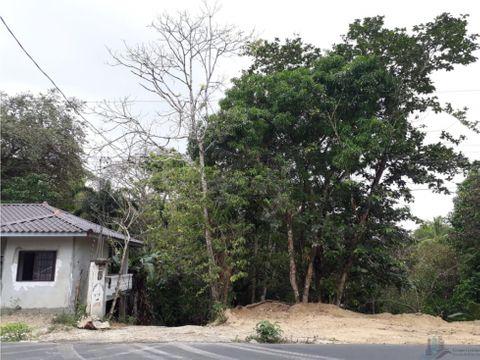 se vende terreno de 5 hectareas gatuncillo nuevo paraiso en colon